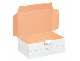 Maxibriefkarton weiß 240x160x50mm